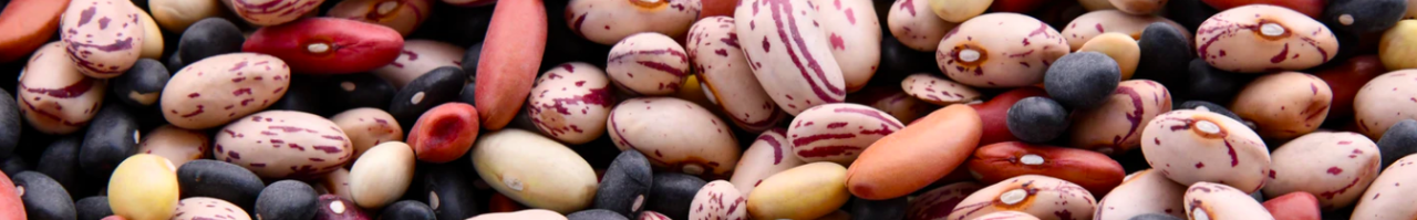 Beans and lentils lower blood sugar